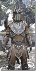 Aldmeri Dominion Homespun - Argonian Male Shirt Close Front