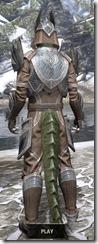 Aldmeri Dominion Homespun - Argonian Male Shirt Rear
