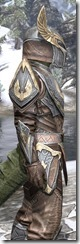 Aldmeri Dominion Rawhide - Argonian Male Close Side