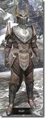 Aldmeri Dominion Rawhide - Argonian Male Front