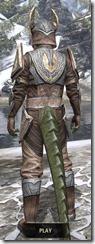 Aldmeri Dominion Rawhide - Argonian Male Rear
