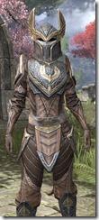 Aldmeri Dominion Rawhide - Khajiit Female Close Front