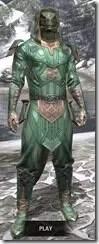 Ancient-Orc-Homespun-Argonian-Male-Shirt-Front_thumb.jpg