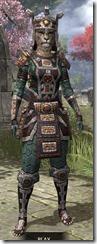 Argonian-Dwarven-Khajiit-Female-Front_thumb.jpg