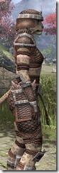 Argonian Hide - Khajiit Female Close Side