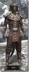 Argonian Iron - Argonian Male Front