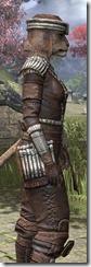 Argonian Iron - Khajiit Female Close Side