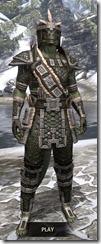 Argonian Leather - Argonian Male Front