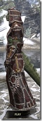 Argonian Spidersilk - Argonian Male Robe Side