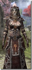 Argonian Spidersilk - Khajiit Female Robe Close Front