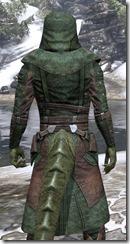 Assassins League Homespun - Argonian Male Robe Close Rear
