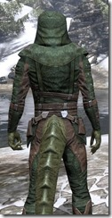 Assassins League Homespun - Argonian Male Shirt Close Rear