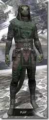 Assassins League Homespun - Argonian Male Shirt Front