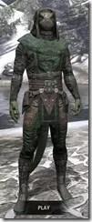 Assassins-League-Homespun-Argonian-Male-Shirt-Front_thumb.jpg