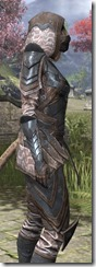 Assassins League Iron - Khajiit Female Close Side