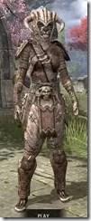 Barbaric-Iron-Khajiit-Female-Front_thumb.jpg