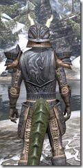 Celestial Iron - Argonian Male Close Rear