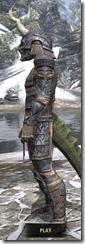 Celestial Iron - Argonian Male Side