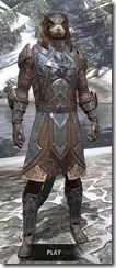 Dark Brotherhood Iron - Argonian Male Front