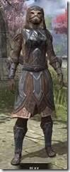 Dark-Brotherhood-Iron-Khajiit-Female-Front_thumb.jpg
