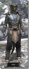Dark-Elf-Iron-Argonian-Male-Front_thumb.jpg