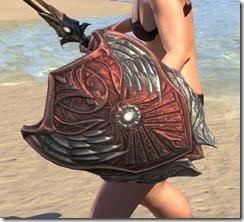 Meridian-Shield-2_thumb.jpg