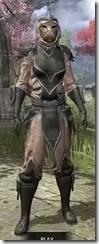 Redguard-Leather-Khajiit-Female-Front_thumb.jpg