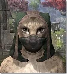 Assassins-League-Homespun-Hat-Khajiit-Female-Front_thumb.jpg