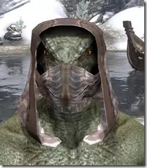 Assassins-League-Iron-Helm-Argonian-Male-Front_thumb.jpg