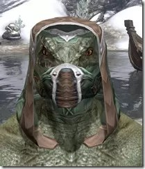 Dark-Brotherhood-Homespun-Hat-Argonian-Male-Front_thumb.jpg