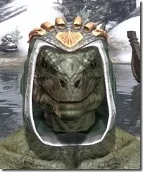 Dead-Water-Homespun-Hat-Argonian-Male-Front_thumb.jpg