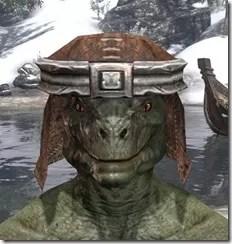 Argonian-Helm-1-Argonian-Male-Front_thumb.jpg
