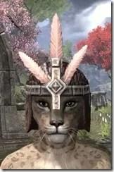 Argonian-Helmet-3-Khajiit-Female-Front_thumb.jpg