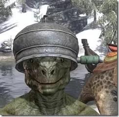 Cadwells-Helmet-Argonian-Male-Front_thumb.jpg