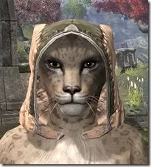 High-Elf-Hat-2-Khajiit-Female-Front_thumb.jpg