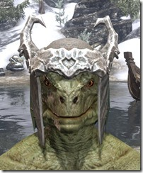 Coldsnap-Homespun-Hat-Argonian-Male-Front_thumb.jpg