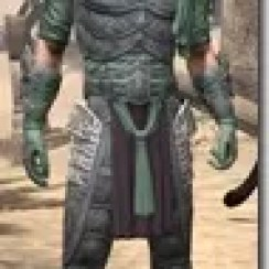 Dragonguard-Homespun-Male-Shirt-Front_thumb.jpg