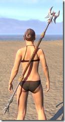 Ancient Dragon Hunter Staff 1