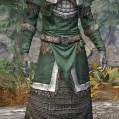 Icereach Coven Homespun - Khajiit Female Robe Front