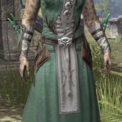 New Moon Priest Homespun - Khajiit Female Robe Front