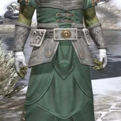 Shield of Senchal Homespun - Argonian Male Robe Front
