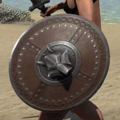 Swordthane Shield 2