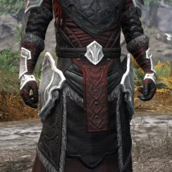 Thorn Legion Light - Argonian Male Robe Front