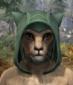 Arkthzand Armory Homespun Hat - Khajiit Female Front