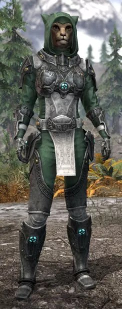 Arkthzand Armory Homespun - Khajiit Female Shirt Front