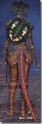 Argonian Dragonknight Novice - Female Back