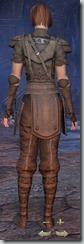 Breton Nightblade Novice - Female Back