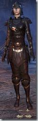 Breton Nightblade Veteran - Female Front