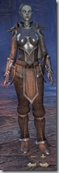 Dark Elf Dragonknight Novice - Female Front