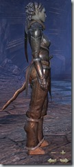 Dark Elf Dragonknight Novice - Female Right